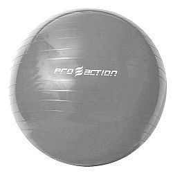 Gym Ball 65 cm Pro Action